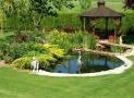 Một số lưu ý khi thiết kế sân vườn có hồ nước