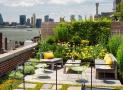 Thiết kế vườn trên sân thượng, cần lưu ý những gì?