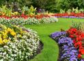 3 tuyệt chiêu phối màu đỉnh cao trong thiết kế sân vườn