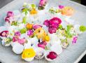 Học cách cắm hoa đơn giản, sáng tạo cho nhà thêm xinh