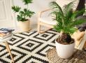 9 giải pháp cho ngôi nhà thân thiện với môi trường