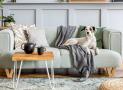 Hướng dẫn cách vệ sinh ghế sofa vải vừa sạch vừa nhanh mà không cần gọi thợ