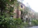 Ám ảnh biệt thự hoang tại Khu đô thị Nam Từ Sơn