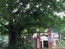 Đà Nẵng: Phê duyệt quy hoạch chi tiết Khu di tích đồi Trung Sơn