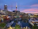 Thị trường bất động sản Auckland tăng trưởng chậm