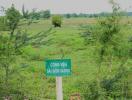 Tp.HCM: Điều chỉnh quy hoạch công viên Sài Gòn Safari
