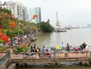 Tp.HCM: Nghiên cứu thiết kế 2 cầu đi bộ tại công viên cảng Bạch Đằng