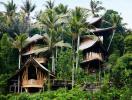 Nhà tre nhiều tầng ẩn mình giữa rừng dừa Bali