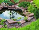 Cách tự làm hồ cá mini cho khu vườn thêm sinh động