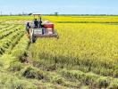 Điều chỉnh quy hoạch sử dụng đất tại tỉnh Thái Bình và Long An