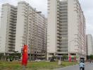 Tp.HCM bán đấu giá 200 căn hộ tái định cư Phú Mỹ, quận 7