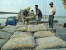 Xuất khẩu xi măng thúc đẩy sự tăng trưởng của toàn ngành