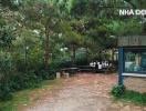 Hidden Villa - ngôi nhà ẩn giữa rừng thông ở Hà Nội