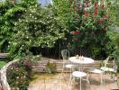 Vườn sân thượng 200 m2 quanh năm xanh tốt ở Hà Nội