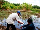 Tăng hệ số tính tiền sử dụng đất: Dân nghèo gặp khó