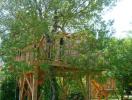 """Ngôi nhà gỗ tiện nghi ẩn mình giữa rừng cây khiến ai cũng """"thèm"""""""