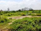 Cảnh báo dấu hiệu lừa đảo bán đất quy hoạch Đại học Quốc gia Tp.HCM