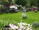 """Khu vườn 500m2 như """"công viên hoa"""" của mẹ Việt"""