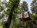 Thăm ngôi nhà trên cây xinh xắn trong khu rừng Đan Mạch