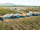 Khách sạn hình bong bóng cực lạ mắt giữa cánh đồng nho ở Mexico