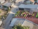 Ngôi nhà có vườn rau trên mái cung cấp thực phẩm sạch cho gia đình quanh năm