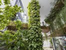 Không gian spa xanh mát như vườn treo Babylon thu nhỏ giữa lòng Đà Nẵng