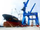 Cảng Hiệp Phước Nhà Bè và tiềm năng khai thác kinh tế