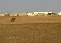 Bán đất ở đô thị giá rẻ giáp Bình Chánh, 2 tr/m2, 0933.178.679