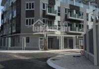 Cho thuê gấp liền kề A10 mặt phố Nguyễn Chánh, 130.4m2 x 5 tầng, LH 0982.339.666