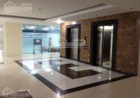 Chủ đầu tư ưu đãi cho thuê 147m2-1000m2 văn phòng tòa nhà 170 La Thành, Đống Đa, 230.000vnđ/m2