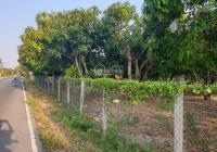 Cần bán đất mặt tiền đường Duyên Hải, xã Long Hòa, giá 25tr/m2. Liên hệ: 0917888952 gặp Phú