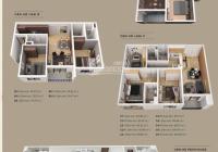 CĐT mở bán đợt cuối toà chung cư The Zen Gamuda giá gốc ưu đãi lớn, LH 0975689786