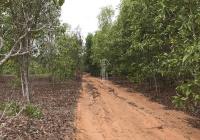 Chính chủ bán đất gần sân bay Phan Thiết, mặt tiền đường sỏi vào sân bay. LH 0935666905 (Ngọc)
