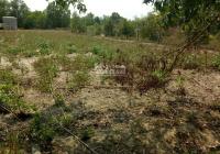 Cần tiền bán lô đất Phú Hữu, Nhơn Trạch, MT sông thích hợp làm nhà vườn, giá rẻ SR chính chủ
