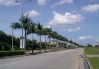 Bán gấp đất KDC Phước Đông - Cần Đước, chỉ 700 tr, sổ riêng, ngân hàng cho vay 70%, giá đầu tư