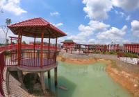 KĐT Young Town Tây Bắc Sài Gòn chính chủ cần bán gấp 2 lô view công viên Osaka, giá chỉ 600 triệu