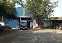 Xưởng 1156m2 đường xe công Thái Hòa Tân uyên kinh doanh đa nghề