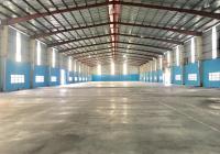 Kho dịch vụ chứa hàng hóa trong KCN Tân Tạo, Q. Bình Tân đa dạng diện tích cho thuê từ 50 - 500 m2