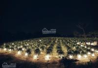 Chính chủ bán lỗ lô đất 1,3ha đất trồng thanh long giá chỉ 650 triệu sổ đỏ riêng, lh: 090141104