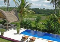 Cần bán đất nhà vườn Nghỉ dưỡng tại Nhơn Trạch: 0865992269