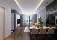Bán cắt lỗ căn hộ đã bàn giao 423 Minh Khai Imperia Sky Garden, 2PN, 3PN. LH: 0913484047
