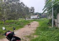 Cần bán gần 1 mẫu đất, 9500m2 gần KCN KBS Đất Cuốc, thuộc thị trấn Tân Thành, Bắc Tân Uyên, BD