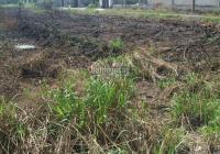 Lô đất cực đẹp tại ấp 2 xã Hựu Thạnh 1 sẹc TL 824