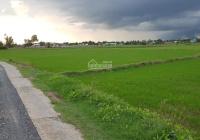 Bán lô đất ruộng tại xã Thuận Thành, huyện Cần Giuộc, tỉnh Long An, DT 1027m2, sát QL50