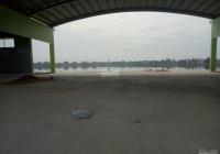 Chính chủ bán gấp đất 5x25m, đường Số 12 rộng 25m Đất Nam Luxury, gần KDC Tân Đô, Hương Sen Garden
