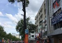Bán nhà mặt tiền 87 Đinh Tiên Hoàng, P3, Bình Thạnh, 4x7m, 4 lầu, 12.5 tỷ