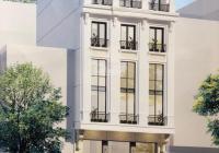 Bán hai nhà mặt phố Hòa Mã, DT 200m2, 9 tầng, mặt tiền 8,2m, đẳng cấp hiếm có