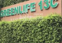 Bán đất nền khu Greenlife 13C sổ hồng DT 269m2, đối diện Đại Học Kinh Tế UEH, LH: 0902826966