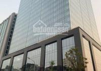 BQL toà nhà Peakview Tower 36 Hoàng Cầu cho thuê văn phòng, DT 100 - 1000m2. Giá ưu đãi