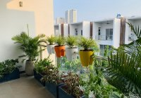 Chuyên cho thuê nhà Compound - Palm Residence, nắm 100% giỏ hàng cho thuê. LH: 0909 828 853